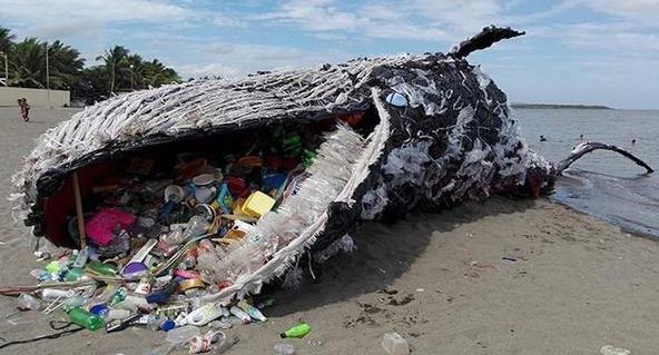 [200430] 고래 조형물 그린피스 필리핀e (1).jpg